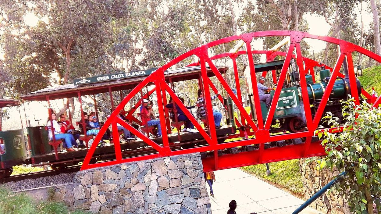 Train day Hanging Outdoors Vibrant Color Red Journey Green Color Travel Rail Transportation Clear Sky Mode Of Transport Focus On Foreground