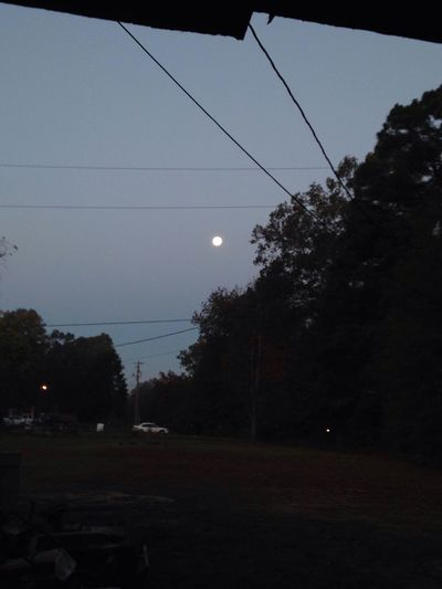 I love the moon SPECIALLY when it's still up when the sun comes up too Tree Sky Transportation No People Nature Outdoors Land Vehicle Telephone Line Day Moon