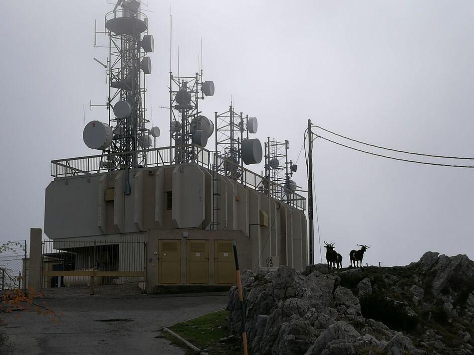Outdoors Day Fog Radar Station Antenna Antennes RadioStation Radio Tower Chèvres