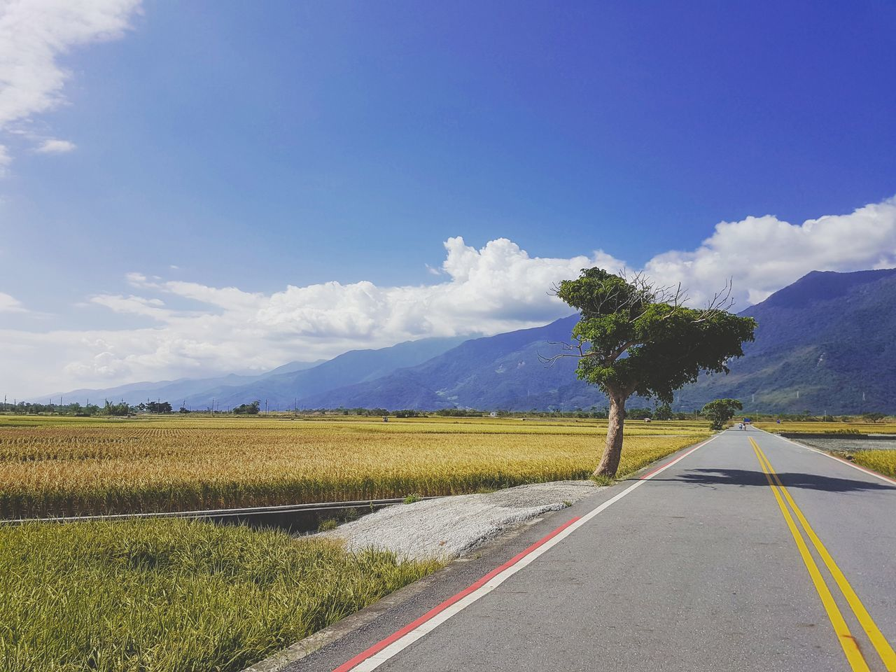 Taitung Taitung,taiwan Bolangdadao Nature Photography Quiet Quiet Moments Endless Photo Travel Taiwan Blue The Way Forward Outdoors Cloud - Sky Sky Road Yellow Landscape Agriculture Transportation Beauty In Nature Nature Beyond Photography Cloud
