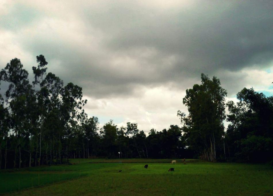 আকাশ জুড়ে মেঘের ঘনঘটা angry clouds & sky Hunting Life
