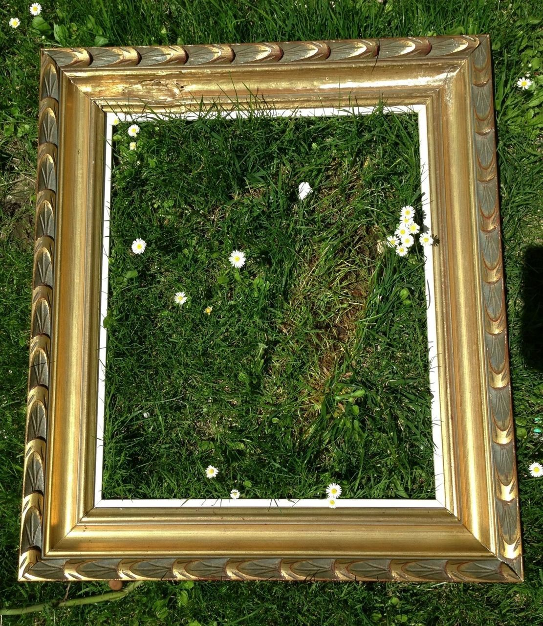 Close-Up Of Abandoned Picture Frame On Grassy Field