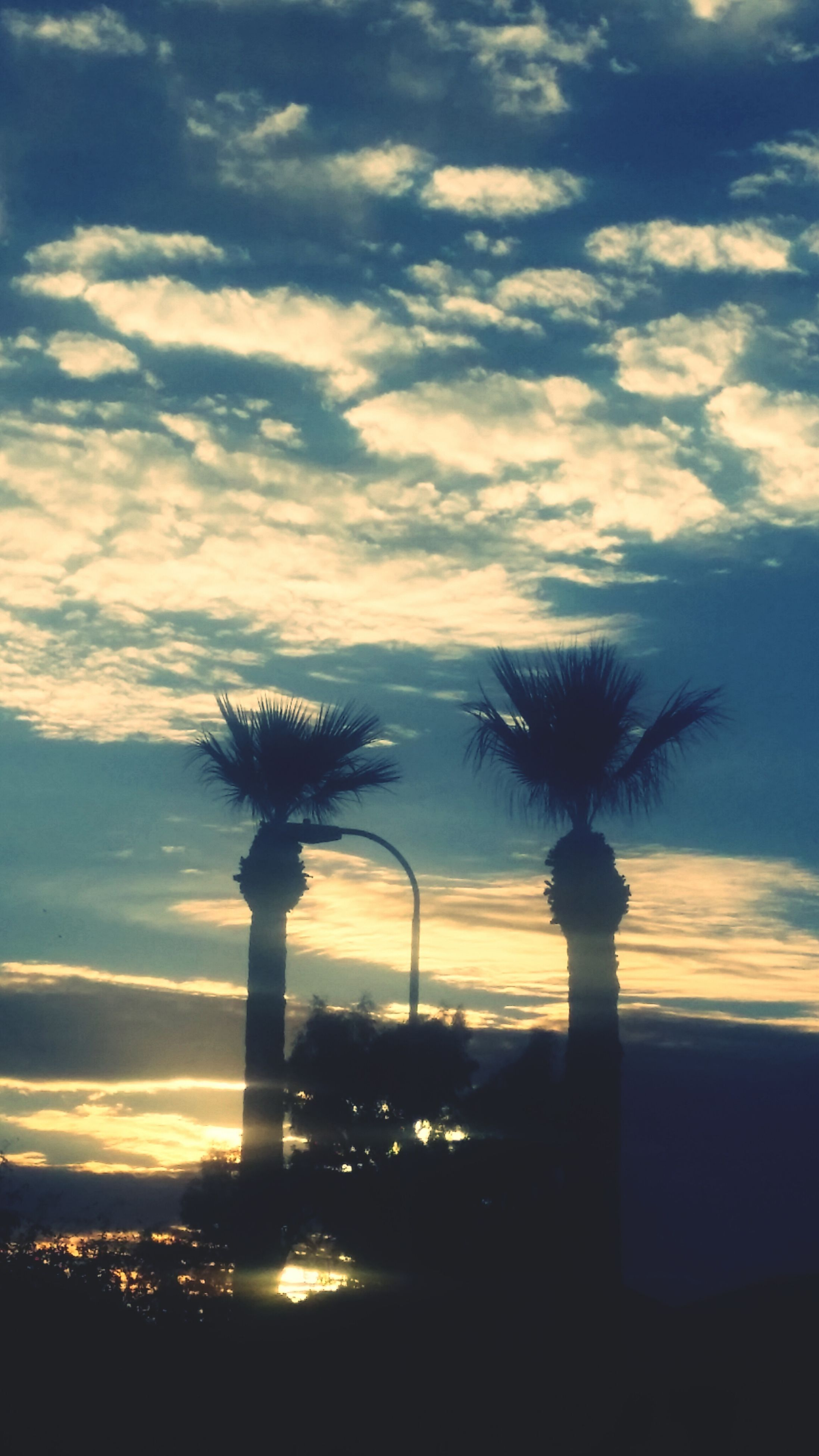 sky, silhouette, sunset, cloud - sky, palm tree, tree, nature, cloud, beauty in nature, cloudy, low angle view, dusk, growth, built structure, scenics, tranquility, no people, outdoors, architecture, tranquil scene