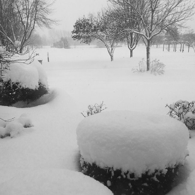 Someday I would miss waking up to this..Snowstorm Lakeeffect Chicago StupidWeather snow