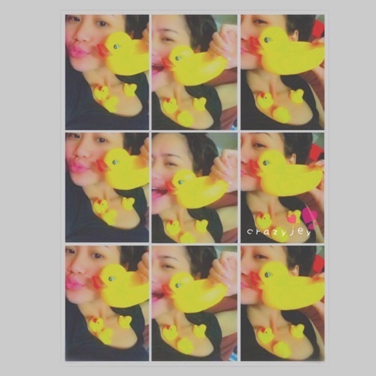 D-duck ~  *