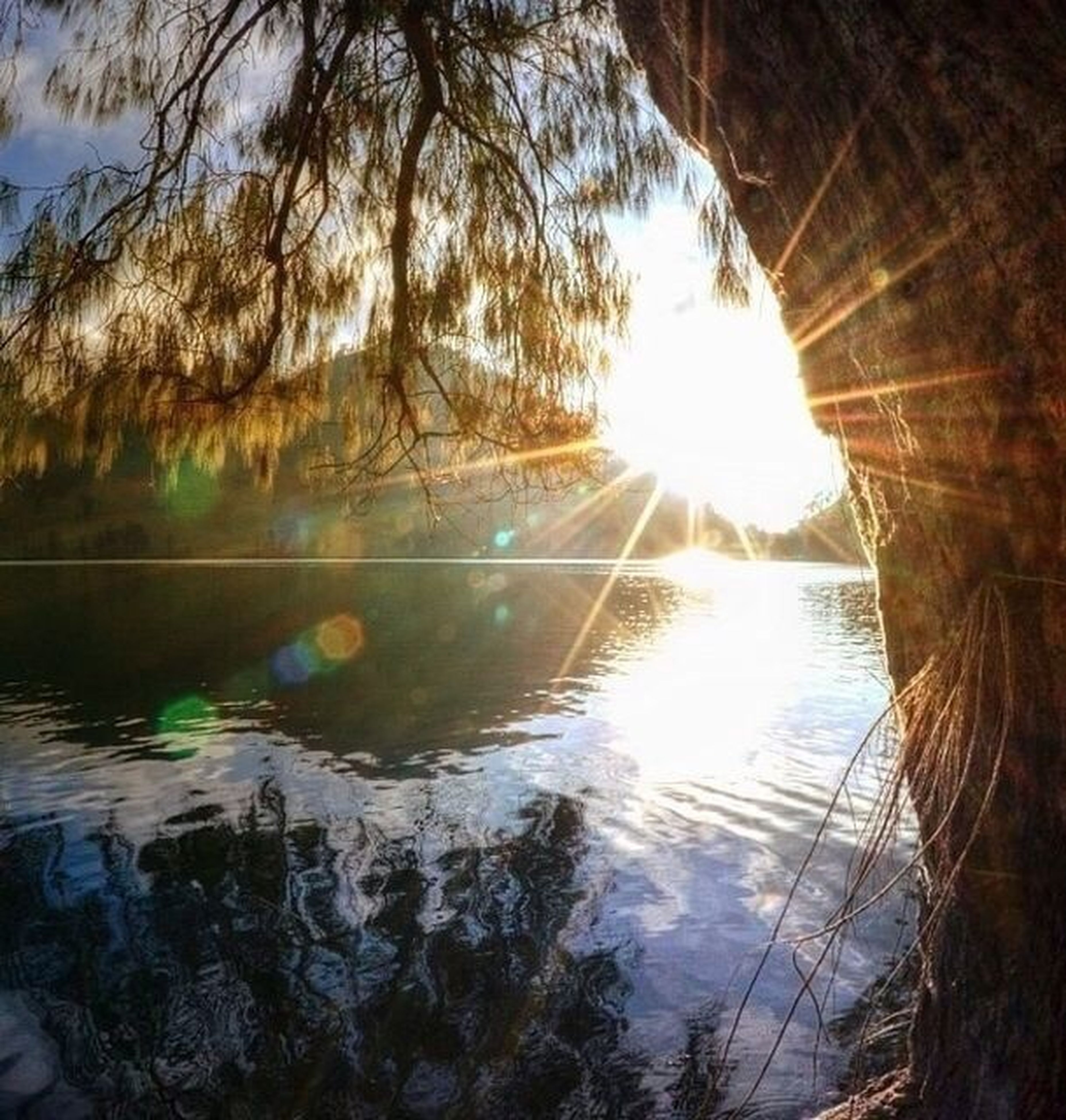 water, reflection, lake, tranquility, tranquil scene, tree, sun, beauty in nature, scenics, nature, sky, sunset, sunlight, silhouette, idyllic, river, outdoors, bare tree, lakeshore, branch