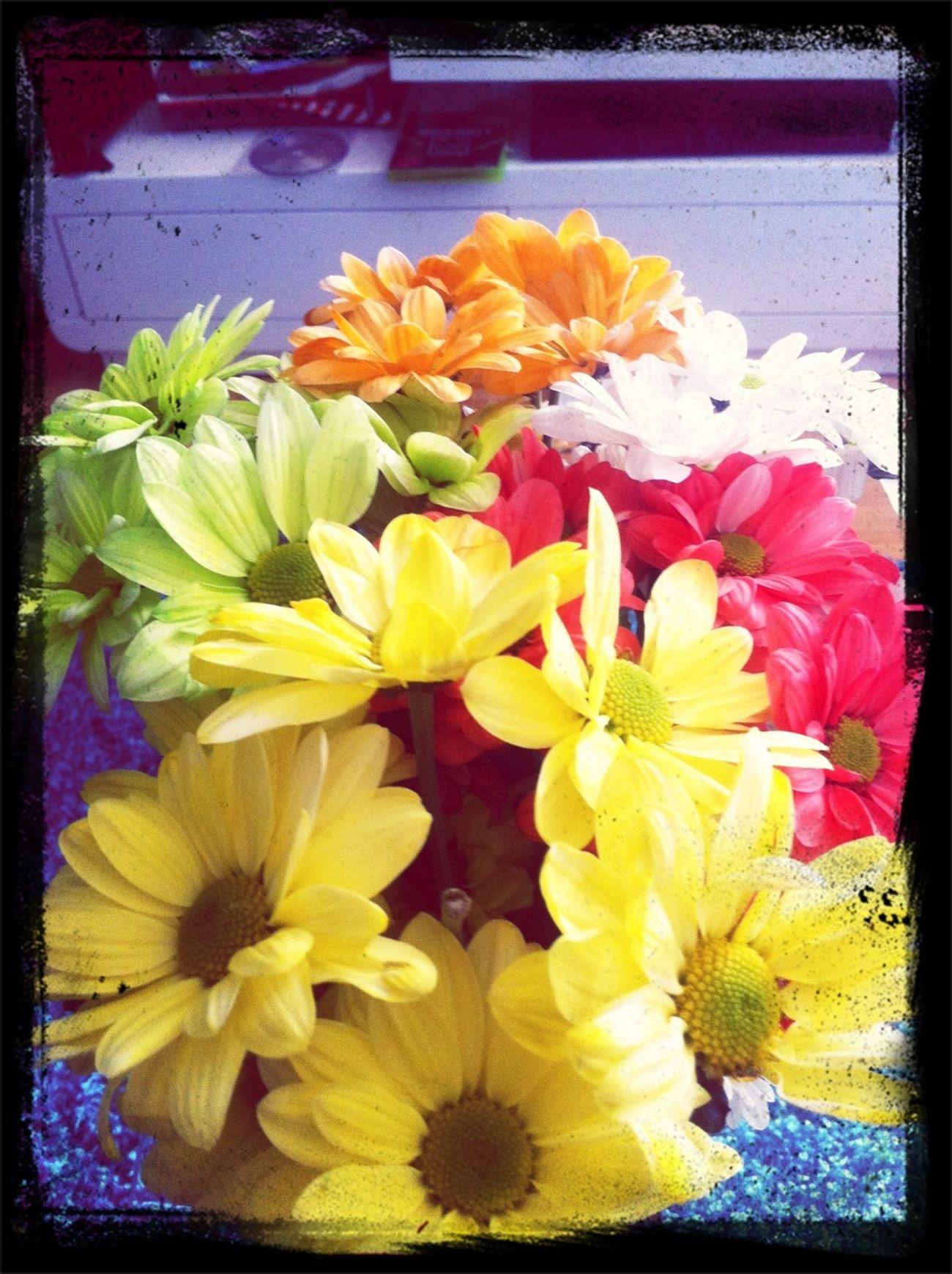 Wochenendblumen Ansehen