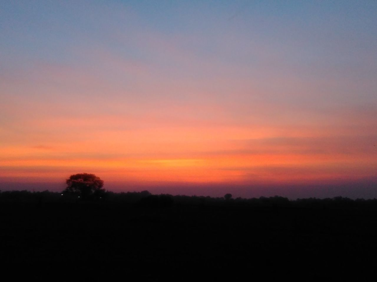sunset, silhouette, nature, scenics, beauty in nature, tranquil scene, tranquility, orange color, sky, landscape, idyllic, no people, outdoors, tree