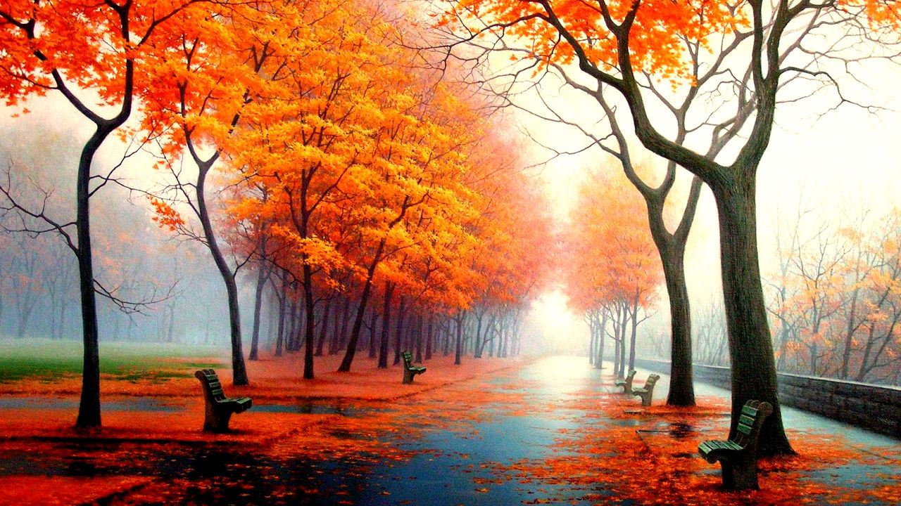 Art Is Everywhere Autumn Bare Tree Beauty In Nature Branch Change Day Grass Growth Leaf Nature Nature Art No People Orange Color Outdoors Scenics Sky Tranquility Tree Tree Trunk