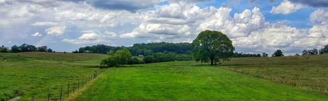 Enjoying Life Natural Beauty Nature On Your Doorstep Natural Light Great Outdoors Natures Beauty Landscape_Collection Landscape_photography Clouds And Sky Countryside Wide Open Spaces Tennessee Beautiful View Beautiful Day Window To The World Color Of Life