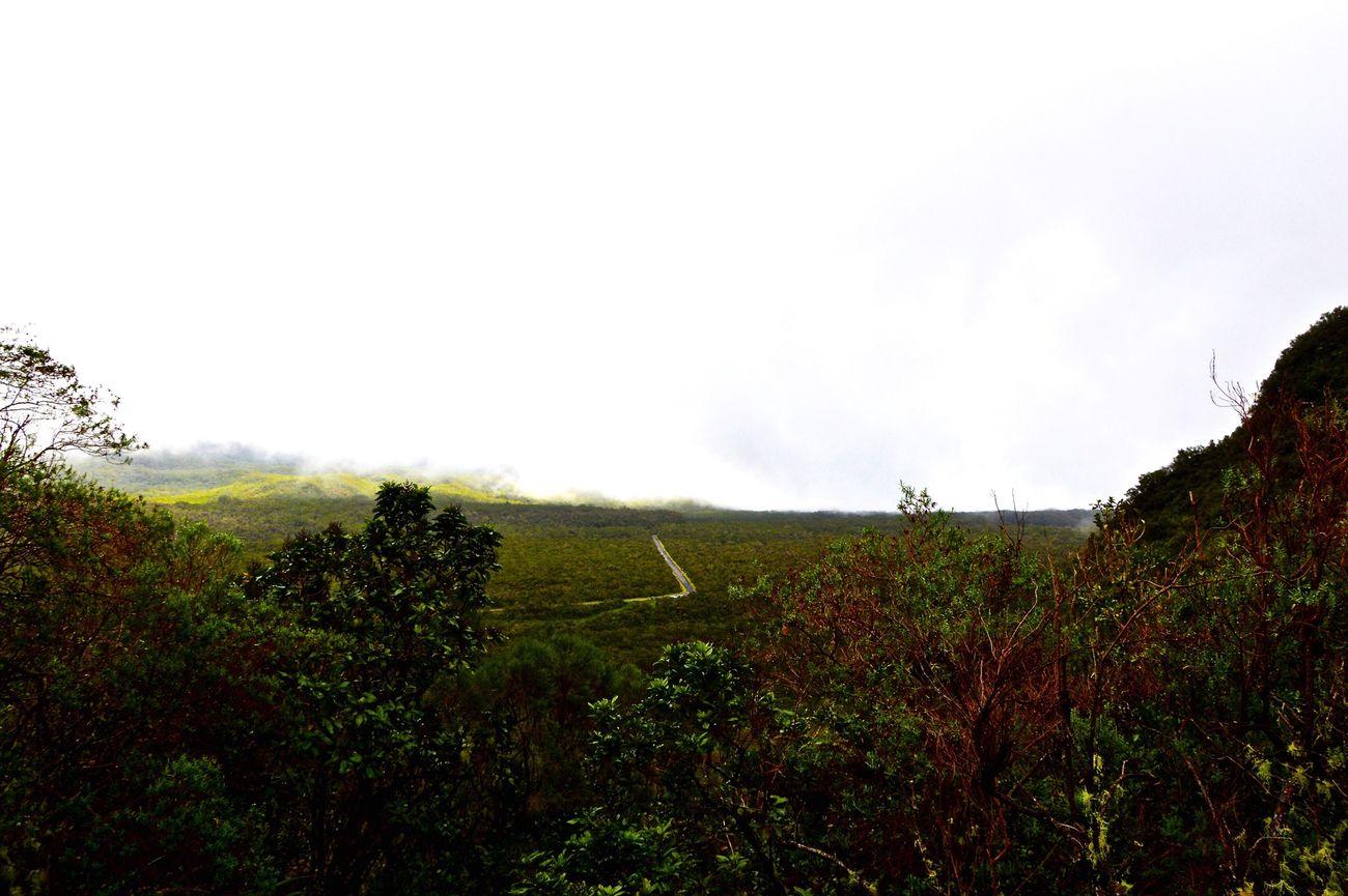 Nikon Île De La Réunion  Hicking Landscape Nature Mountain View
