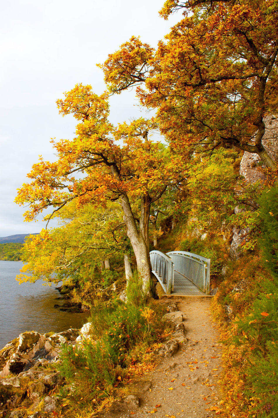 Architecture Autumn Beauty In Nature Branch Change Day Fall Leaf LochLomond Nature No People Outdoors Scenics Scotland Sky Tranquility Tree