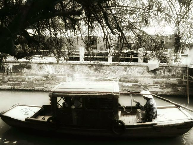 Tree Transportation Mode Of Transport Water Journey Day Riverbank Ships⚓️⛵️🚢 Shiplife Riverside Photography River View
