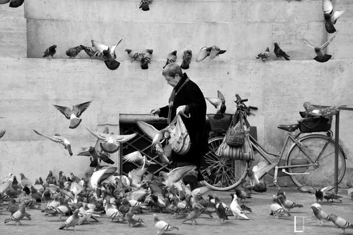 Roma Bike Birds Black And White Streetphotography