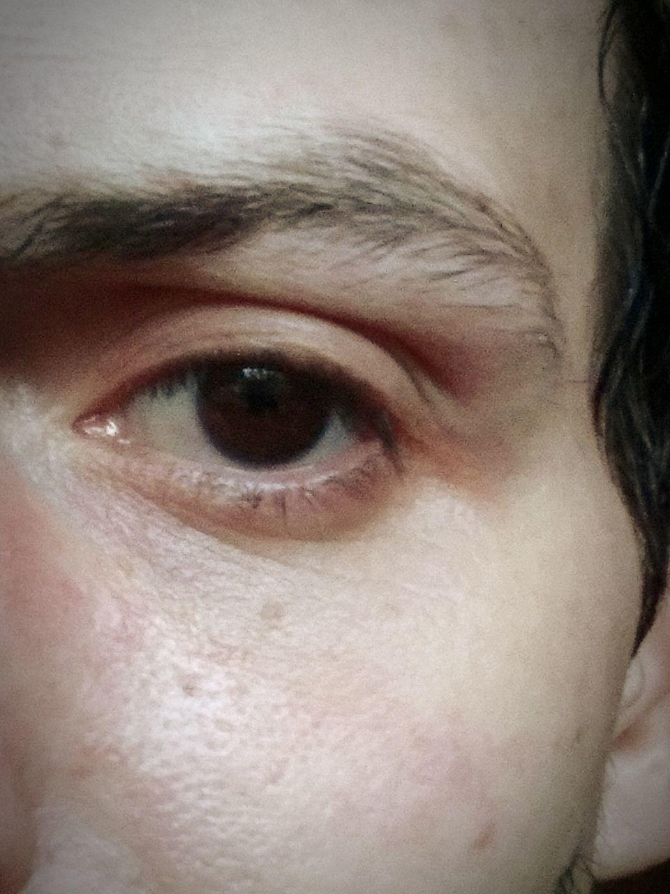 human eye, one person, close-up, real people, eyebrow, human body part, human face, indoors, men, eyelid, eyesight, eyeball, looking at camera, portrait, eyelash, iris - eye, one man only, day, adult, people