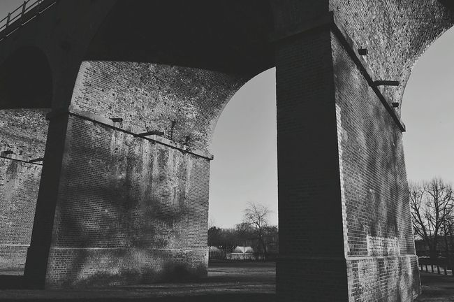 Enjoying my day off Going For A Walk In The Park Railway Viaduct Under Railway Viaduct Railway Water Fountain Light And Shadow Winter Trees Tree Reflections Black And White Photography Black & White Black And White United Kingdom Nikon D3200