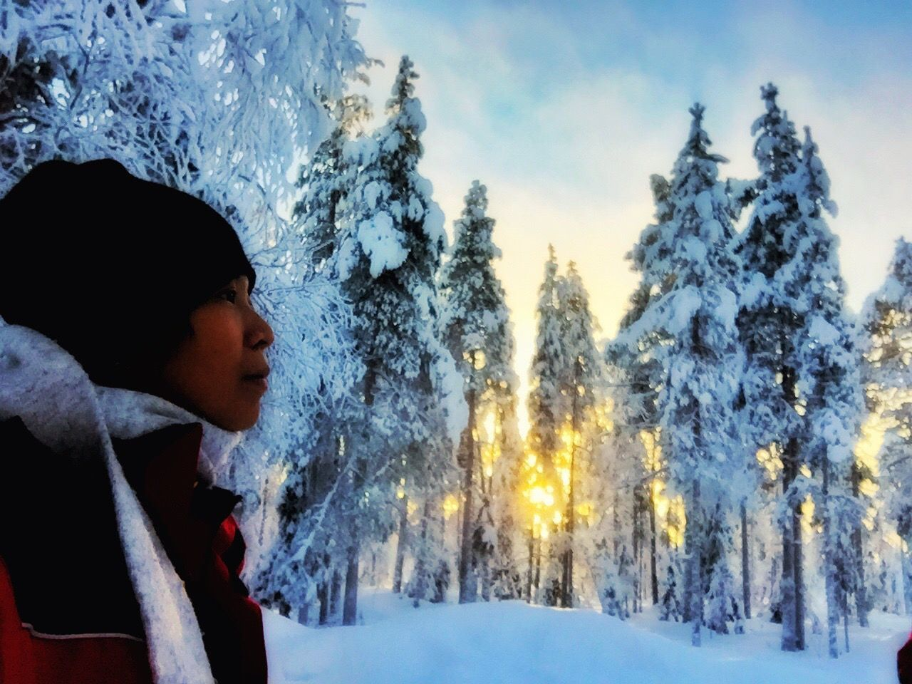 Showcase: February Aurora Chasing Sojourn IntotheArticCircle Rovaniemi, Finland Winterinlaplandfinland Winterinfinland2016 IPS2016Nature Pastel Power LLLimages