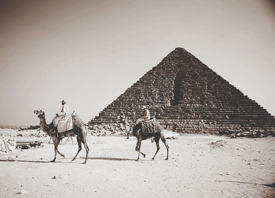Pyramid of Egypt. Around The World by Luftansa. Aroundtheworldbyluftansa Egypt Seetheworld Wonders Of The World
