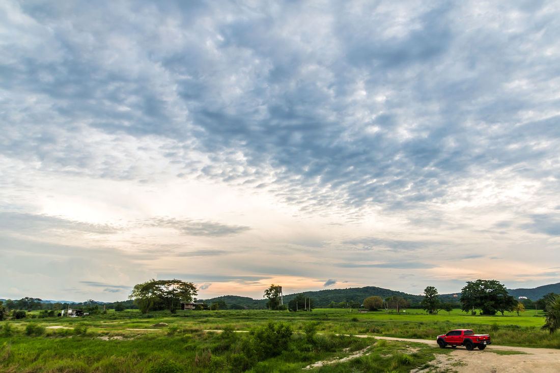 Landscape in cloudy day with fluffy cloud Background; Beauty In Nature Blue Sky; Car Cloud - Sky Cloudy; Day Field Fluffy Cloud; Grass Growth Land Vehicle Landscape Mode Of Transport Mountain; Nature No People Outdoors Rural Scene Scenics Sky Tranquility Tree Tropical; White Cloud;