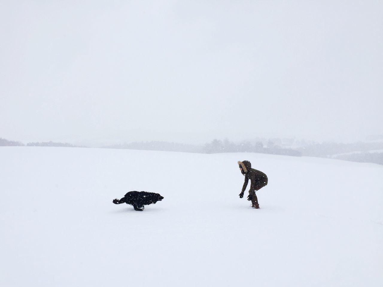 Beautiful stock photos of liebe, winter, cold temperature, snow, season