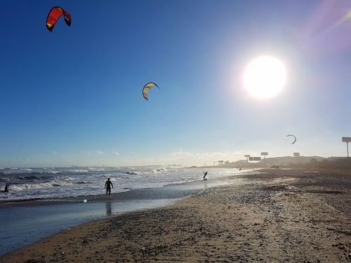 Beach Sunlight Flying Sea Kiteboarding Sand Kite - Toy Outdoors Sport Day Motion Sky People Hot Air Balloon Sunset Only Men Water Adults Only Parasailing One Person
