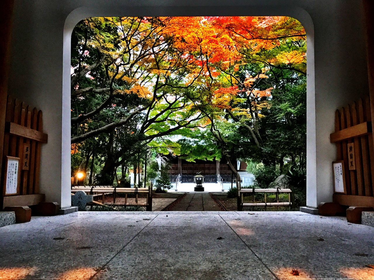 Always Be Cozy Urban Lifestyle Urban Autumn Tokyo,Japan Hello World Taking Photos Getting Inspired OpenEdit Leaves Colour Of Life Outdoors Autumn City Building Exterior Photography