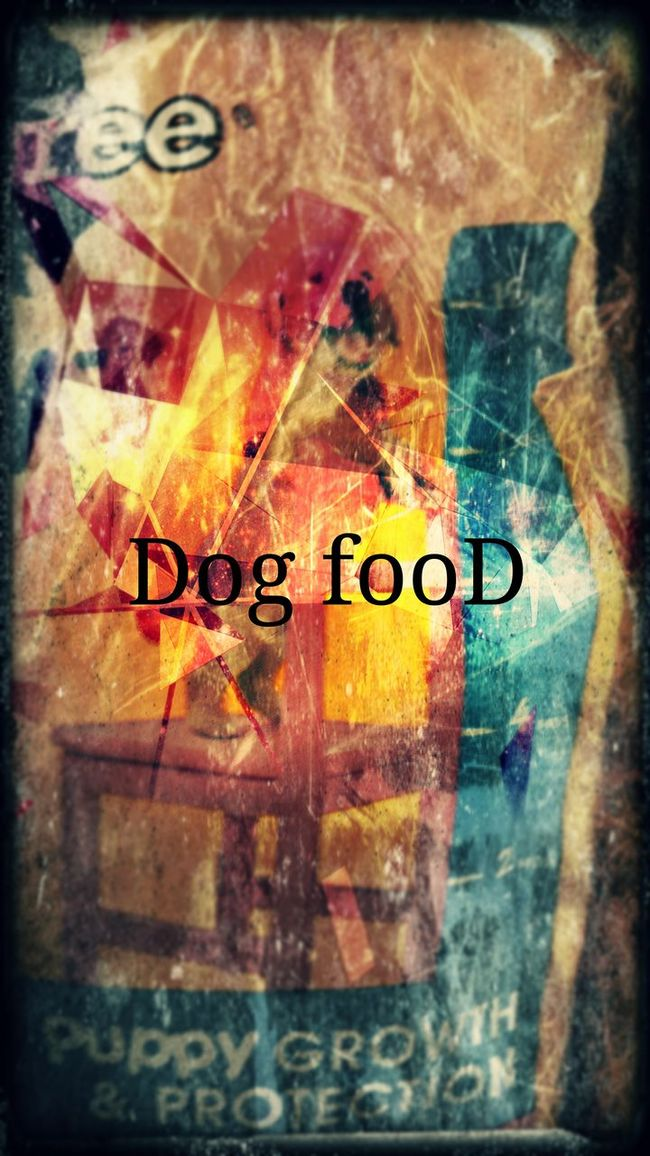 Dog food Chaotic Surrealist Art Dog Food Scratched Bizarre