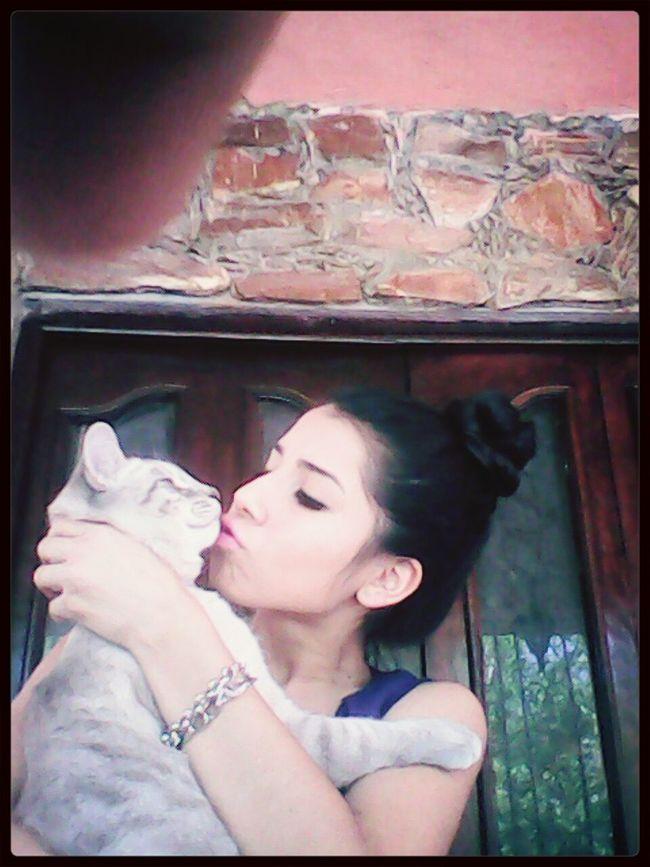 Cat♡ Camilo