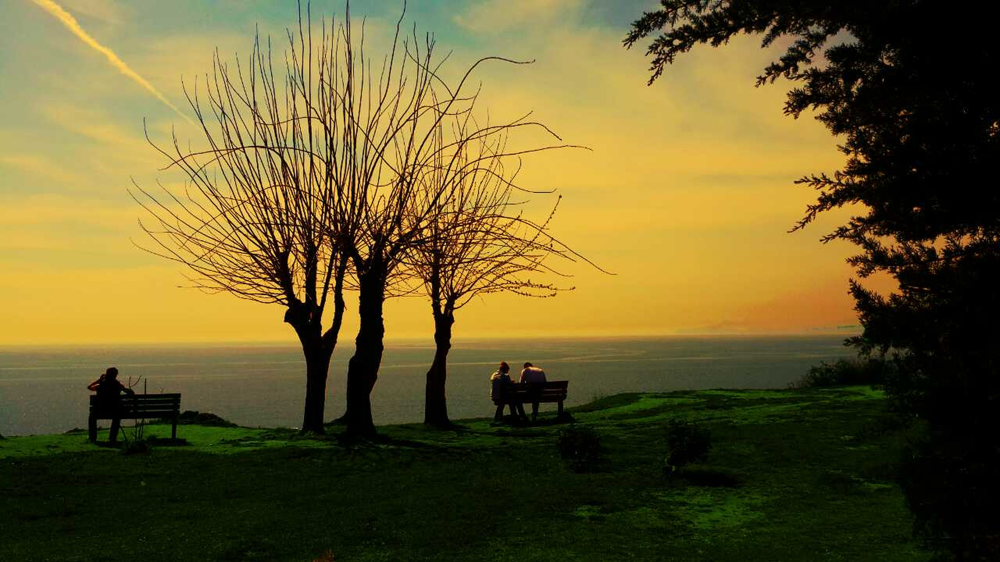 sunset, sky, tranquility, silhouette, tranquil scene, scenics, tree, beauty in nature, grass, horizon over water, nature, bench, orange color, landscape, idyllic, water, sea, cloud - sky, field, relaxation
