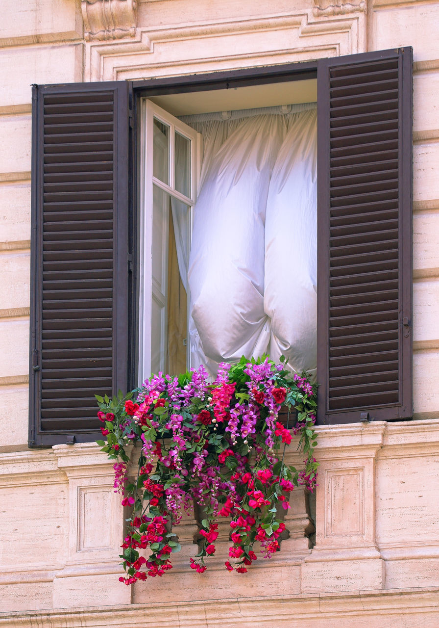 Low Angle View Of Flowers On Window Sill By Curtains