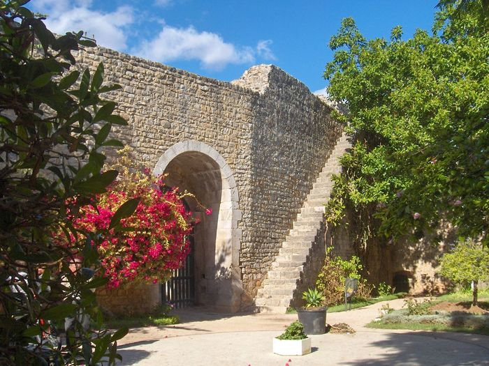 Arch Architecture Building Exterior Built Structure Day Entrance Flower Footpath Garden Growth No People Outdoors Pathway Plant Portugal Sky Steps Stone Wall Sunlight The Way Forward Tree Walkway