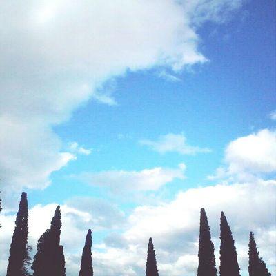 Sky Theskyaboveus