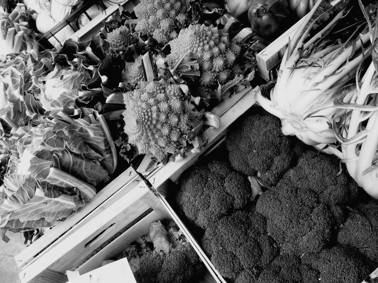 Fotoavilo Eye4photography  Verdura Vegetables