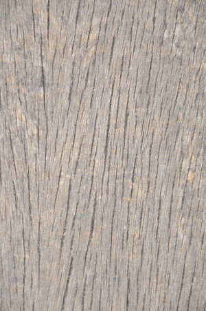 Close Up Pattern Of wood Texture For Background Aging Bark Bark Texture Corroded Detail Details Fullframe Light And Shadow Lumber Nature Pattern Pine Plank Rough Texture Tree Weathered Wood Wooden