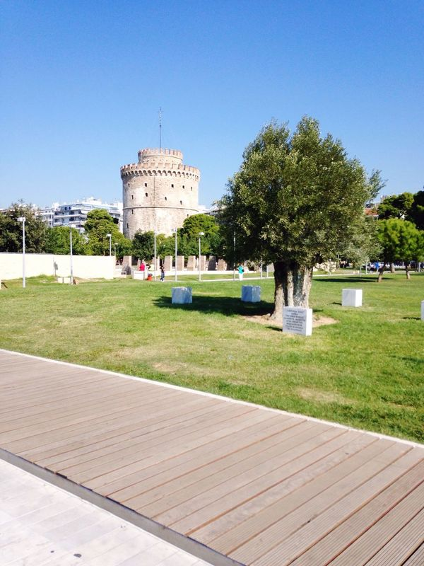 Tree Architecture Built Structure Building Exterior Clear Sky Grass Lawn Blue Growth Travel Destinations Famous Place Day Green Color Outdoors History Tranquility Footpath Culture In Front Of White Tower Of Thessaloniki White Tower