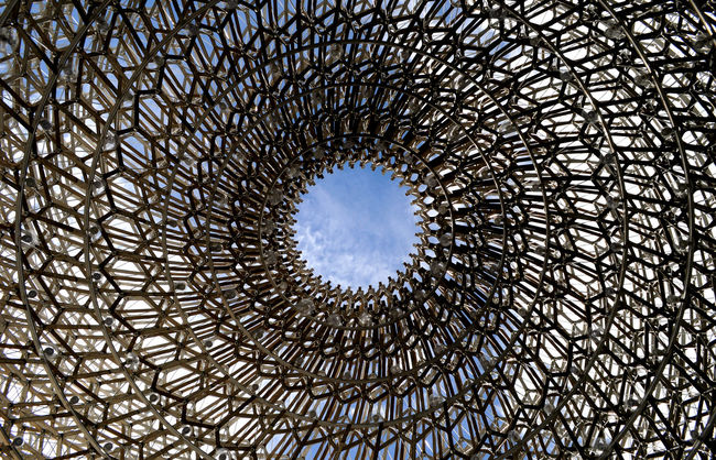 Architectural Feature Architecture Architecture And Art Built Structure Circle Cloud - Sky Concentric Creativity Day Directly Below Geometric Shape Kew Gardens, London Low Angle View Modern No People Sky Structure The Hive Structures And Architecture