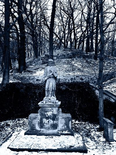 Forlorn saint Tree Winter Cold Temperature Tranquility Nature No People Outdoors Snow Day Beauty In Nature Spirituality Scenics Statue Sculpture Prague Na Cibulce