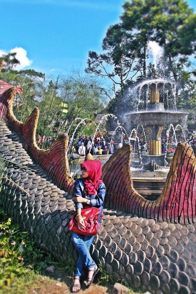 Beautiful Beautiful Nature Casual Clothing Dragon INDONESIA Puncak Bogor Taman Matahari Water Reflections
