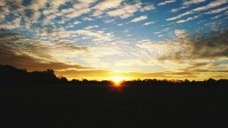 By Leesa Morris Morning Sky Sundays Sunset #sun #clouds #skylovers #sky #nature #beautifulinnature #naturalbeauty Photography Landscape [a:11161500] Photosofrm15 South Ockendon