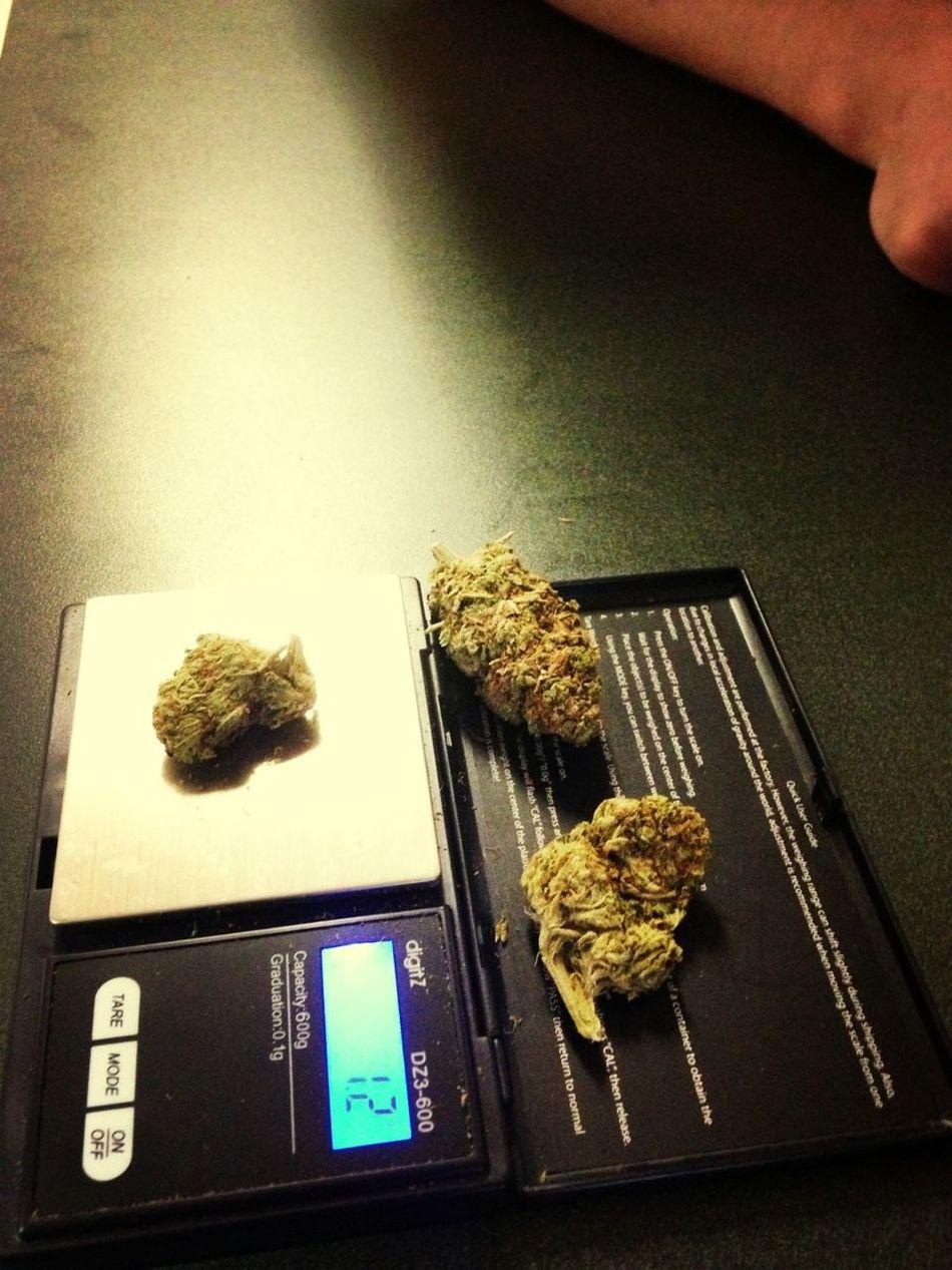 Turn Up Think Im A Official Pothead  I Smoke Good Nigga