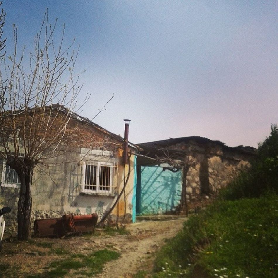 Cocukluk Hayat Birzamanlar Yasam Kokan Zamanlar Simdi Arasıra Uğranan Bir Ev Bitenvedevamedenhayatlar
