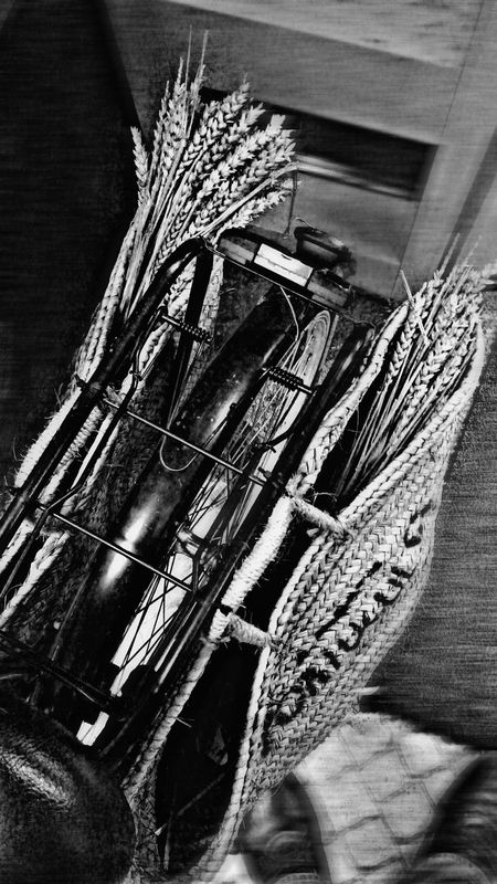 EyeEm Best Shots - Black + White B&w Photo B&w Photography B&w Bycicle Hanging Baskets Bycicle Old Eyeem Bycicle Showcase: January EyeEm Masterclass EyeEm Best Shots EyeEm The Best Shots Eyeemphotography Popular Photos Popular Photo Popular Check This Out Eye4photography  EyeEm Gallery Wheat Wheat Spikes