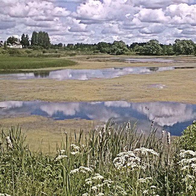 EyeEm Russia Вглубинке Nature