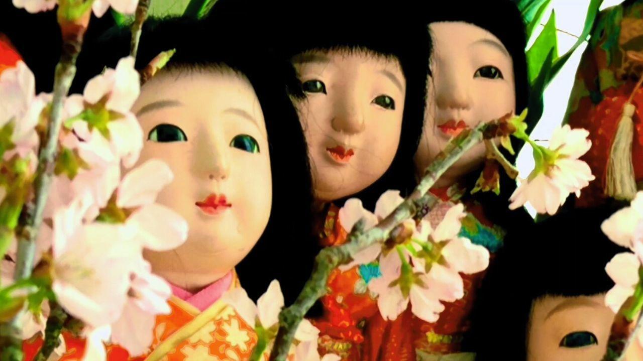 うちの家族、この子たちは前の三人のお友達。左から朋代(ともよ)、桃咲(みさき)、珠瑠(たまる)です 市松人形 日本人形 Home Interior