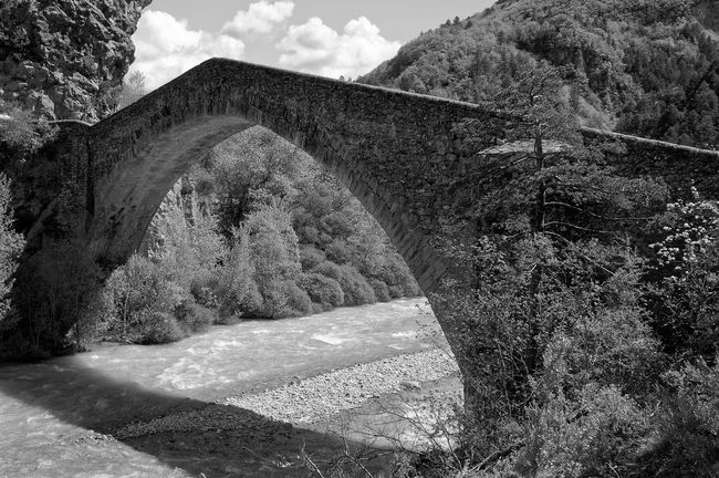 Nikon Bridge Man Made Structure Middle Ages Queen Reine Jeanne SudDeFrance Alpesdehauteprovence Black & White Courbe