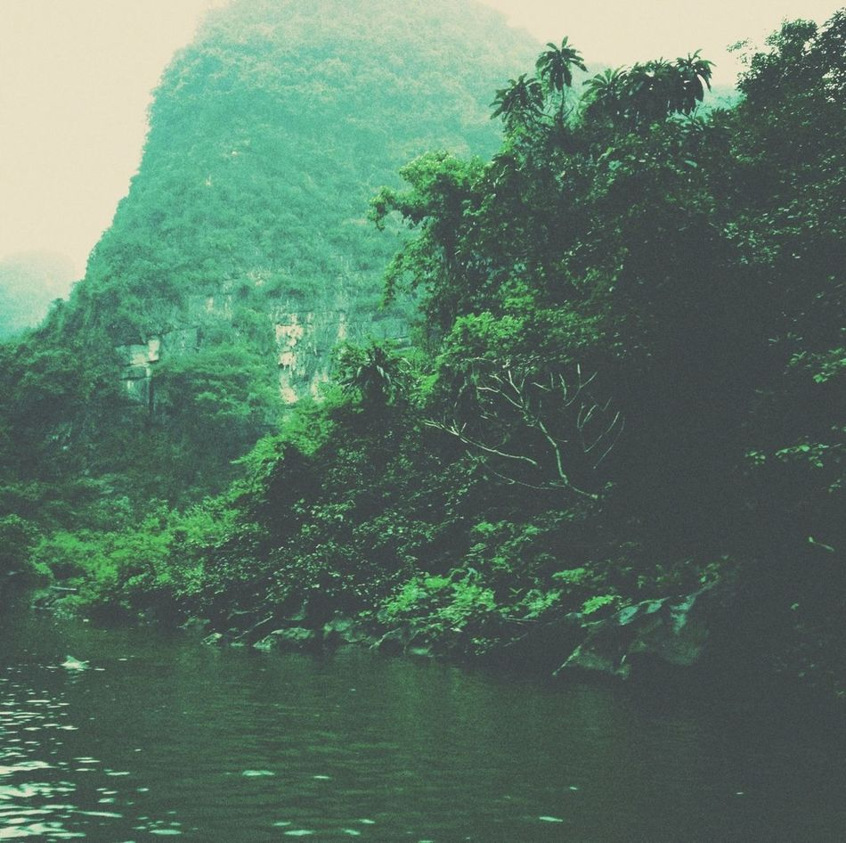 Nature Travelling Green Lake