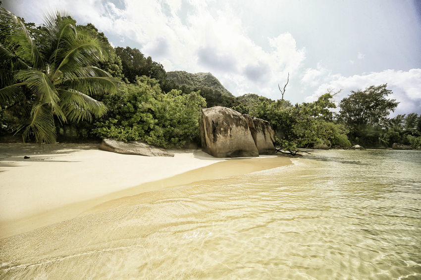 Beach Beauty In Nature Day Landscape_Collection Nature No People Outdoors Praslin Praslin Seychelles Sand Sand Dune Seychelles Seychelles Islands Sky Travel Destinations Travel Photography Tree Water