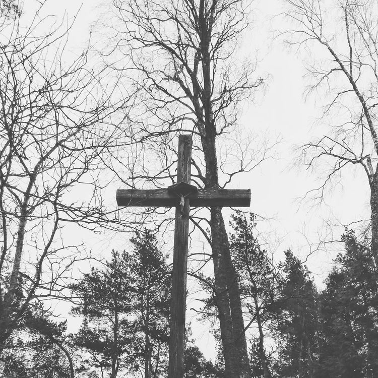 Tree 2017 Lithuania Black And White Collection  Blackandwhitephotography Dark Photography First Eyeem Photo Blackandwhite Photography Popular Photos Black And White Photography Black & White Dark Photography Photo Beautiful EyeEm Tree Nature Hello World Cemetery Photography Metal!! Black Blackmetal