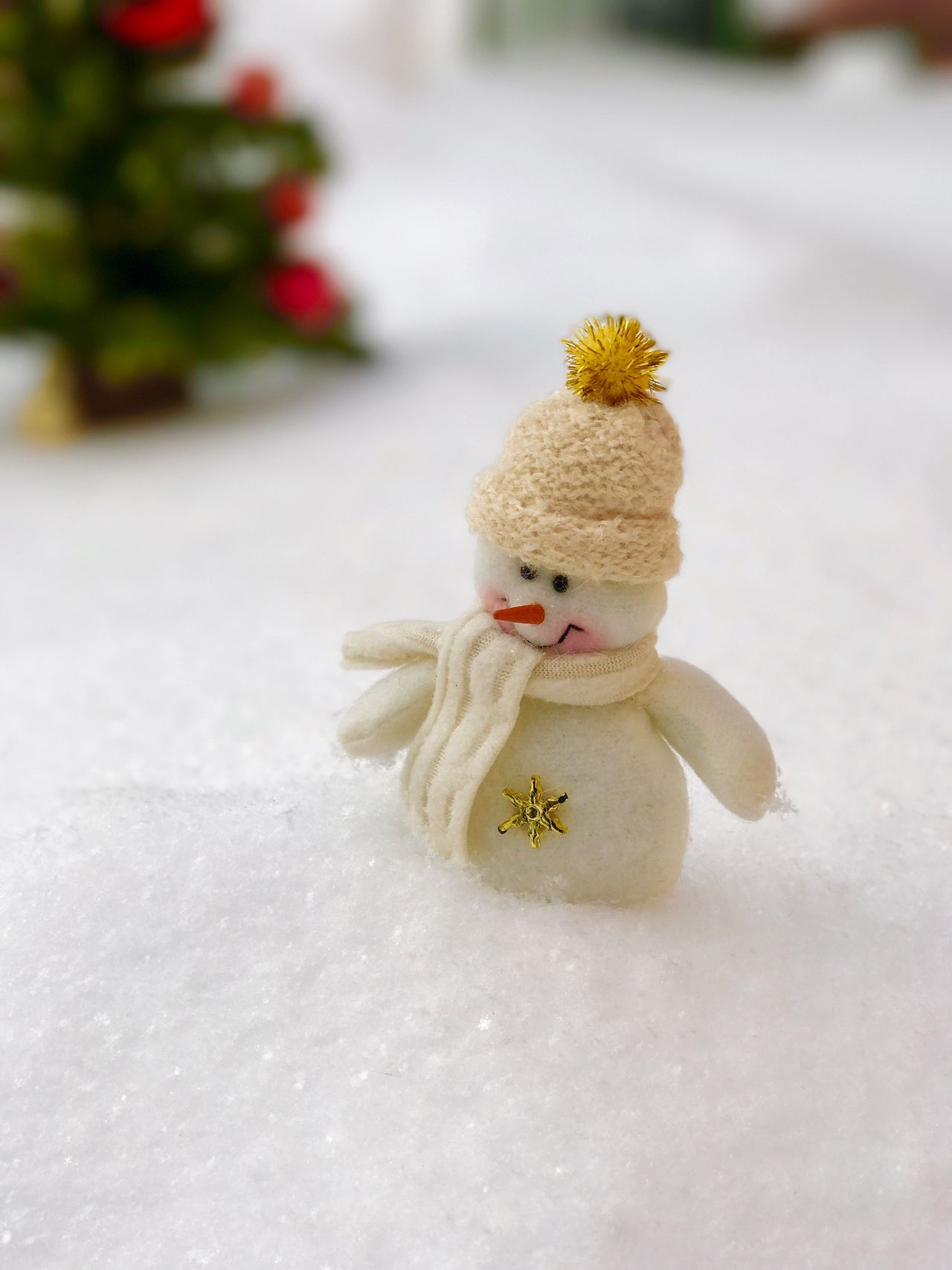 Beautiful stock photos of snowman,  Christmas,  Christmas Decoration,  Close-Up,  Cultures