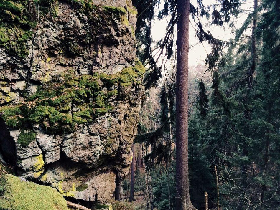 Vscocam Fltrlive Landscape